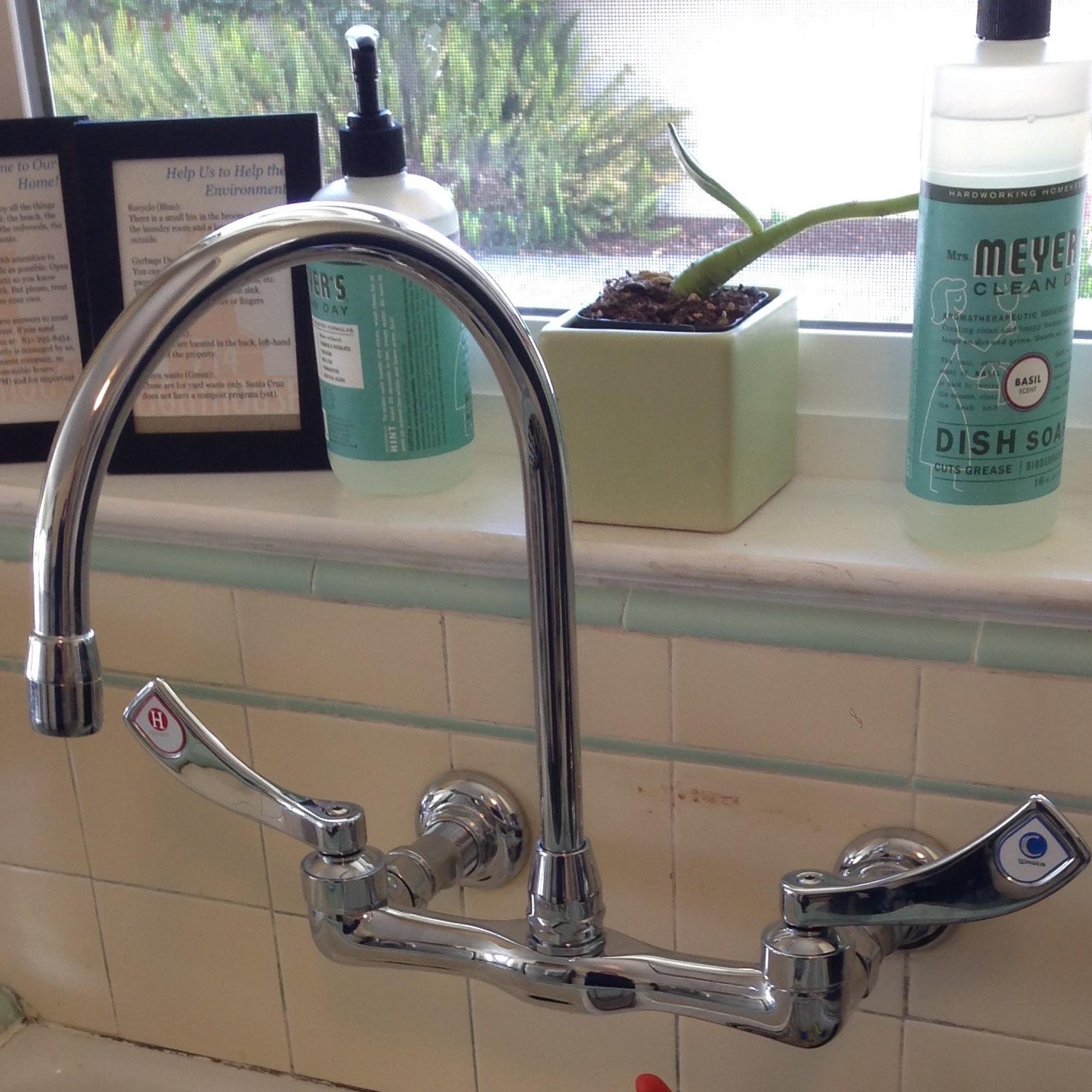 Moen Wall Mount Kitchen Faucet